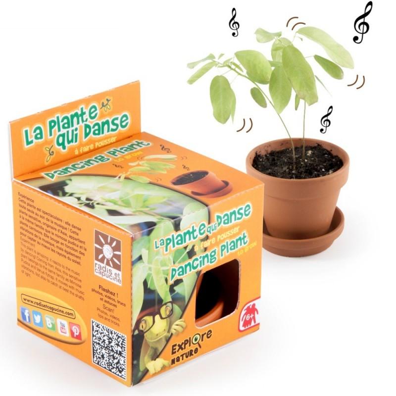 Zestaw do uprawy tańczącej rośliny, Radis et Capucine