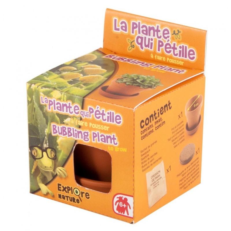 Musująca Roślina doniczka z terakoty z nasionami, Radis et Capucine