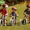 Wishbone Recycled rowerek biegowy ewolucyjny 1+, Wishbone Bike