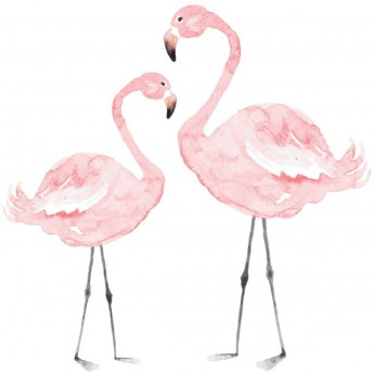 Flamingo naklejka na ścianę 110x110cm, Dekornik