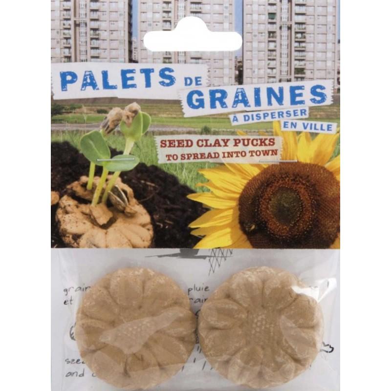 Nasiona słonecznika na podłożu dla dzieci