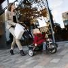 Puky CAT S6 Ceety brązowy rower trójkołowy i spacerówka +18mc