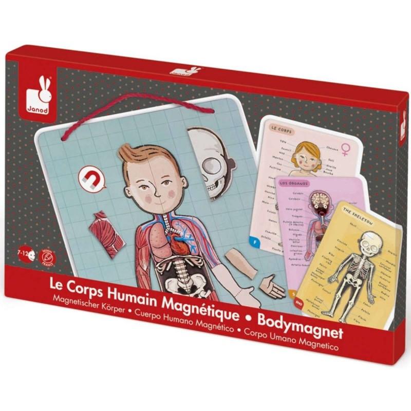Janod Gra magnetyczna edukacyjna Ciało Człowieka +7
