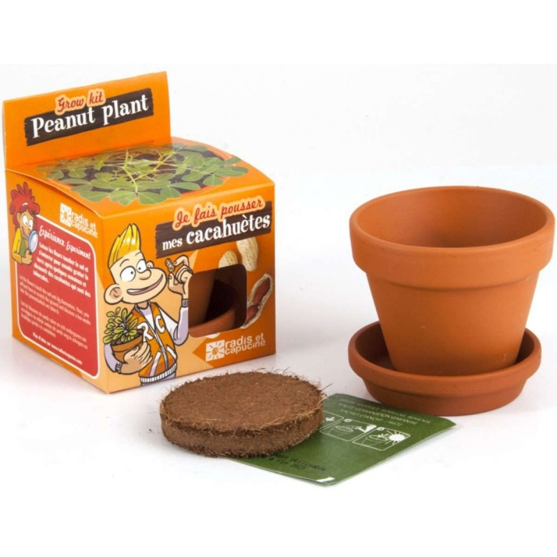 Zestaw do uprawy orzechów ziemnych dla dzieci
