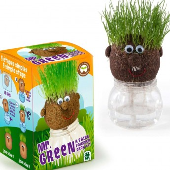 Mr. Green głowa z trawą zestaw dla dzieci od 3 lat, Radis et Capucine