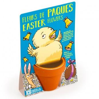 Zestaw Wielkanocny do uprawy stokrotki, Radis et Capucine