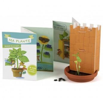 Cud kiełkowania zestaw do obserwacji roślin, Radis et Capucine