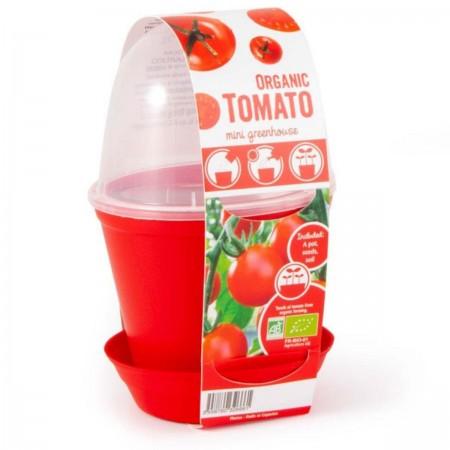 Doniczka z pokrywką szklarnia do uprawy pomidorów