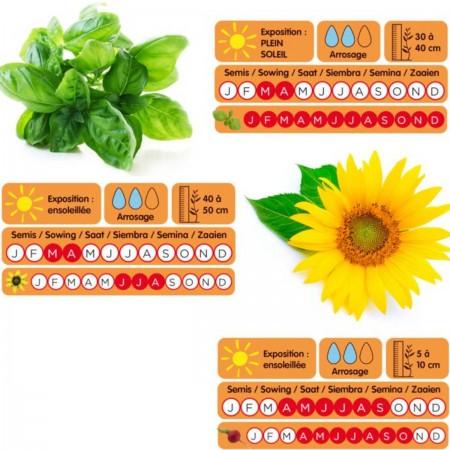 Mały Ogrodnik zestaw do hodowania roślin i narzędzia dla dzieci