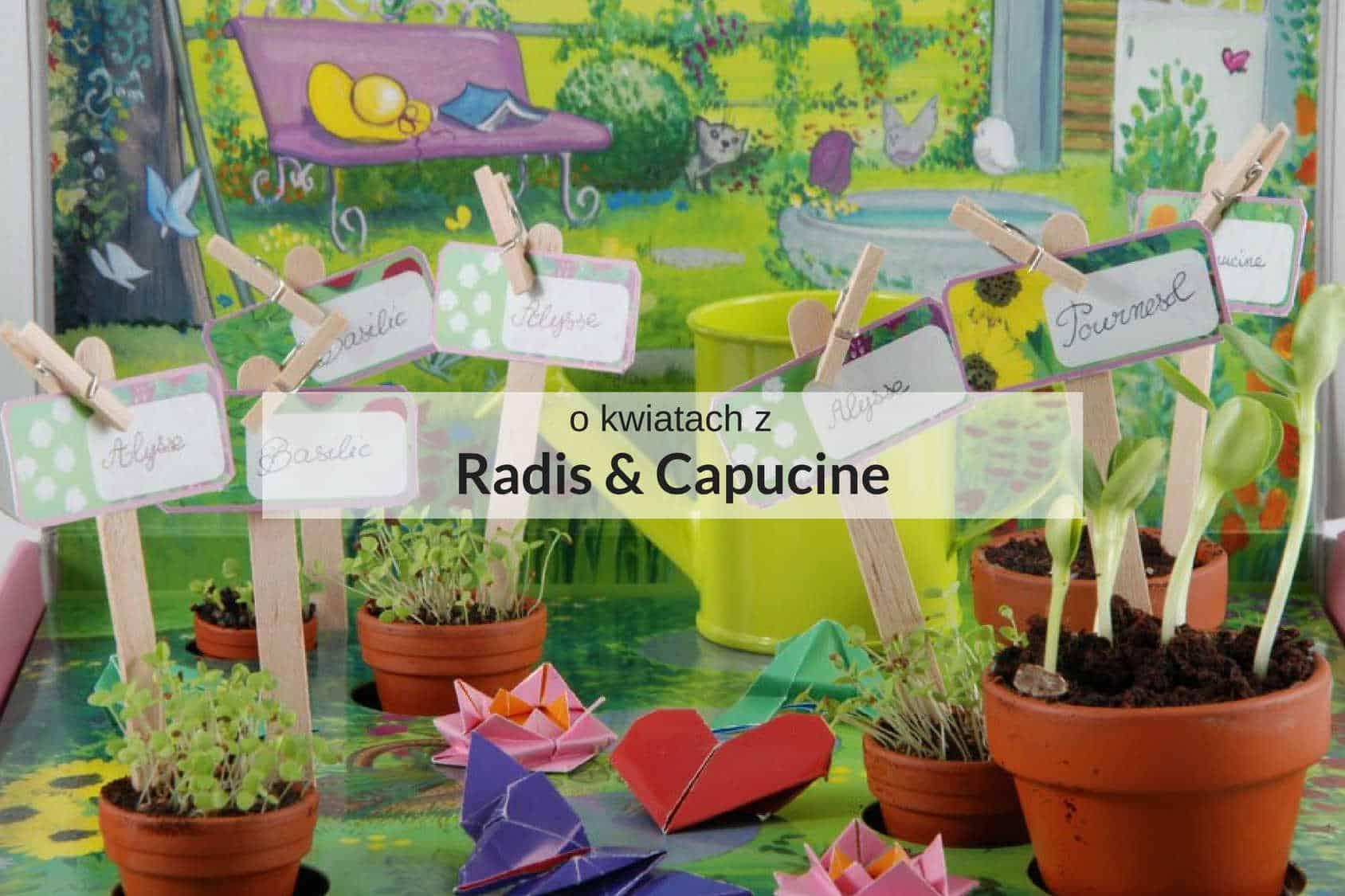Zestaw Radis & Capucine do hodowania roślin dla dzieci